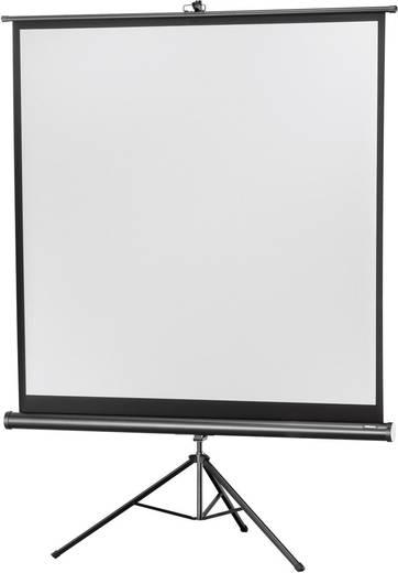 Stativleinwand Celexon Stativ Economy 1090016 184 x 184 cm Bildformat: 1:1