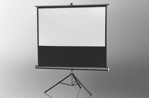 Celexon Stativ Economy 1090023 Stativleinwand 244 x 138 cm Bildformat: 16:9