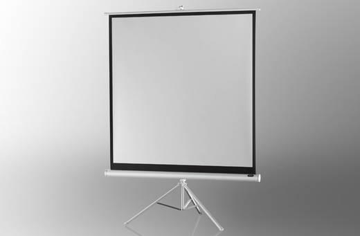 Stativleinwand Celexon Stativ Economy 1090274 244 x 244 cm Bildformat: 1:1