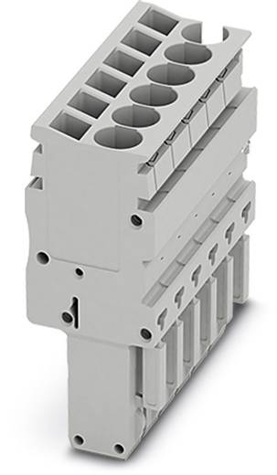 Stecker SP-H 2,5/ 2 Grau Phoenix Contact 50 St.