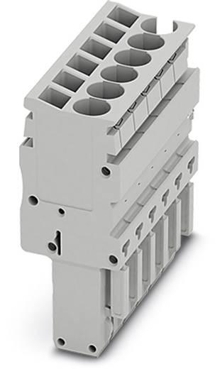 Stecker SP-H 2,5/ 2 SP-H 2,5/ 2 Phoenix Contact Inhalt: 50 St.