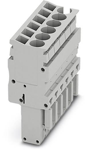 Stecker SP-H 2,5/ 7 SP-H 2,5/ 7 Phoenix Contact Inhalt: 25 St.