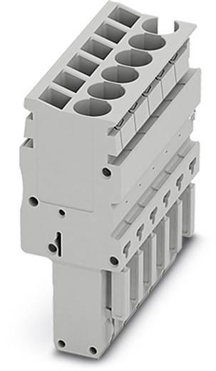 Stecker SP-H 2,5/14 SP-H 2,5/14 Phoenix Contact Inhalt: 10 St.