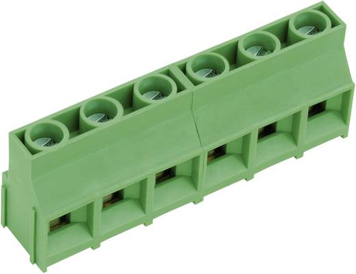 Schraubklemmblock 4.00 mm² Polzahl 10 AKZ841/10-9.52-V PTR Grün 1 St.