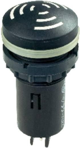 Akustischer Signalgeber Geräusch-Entwicklung: 80 dB 18 - 30 V/AC/DC Inhalt: 1 St.