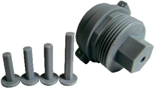Thermostat-Adapter Passend für Heizkörper Herz, Saint Gobain, Comap, Markaryd, Remagg, TA 76030