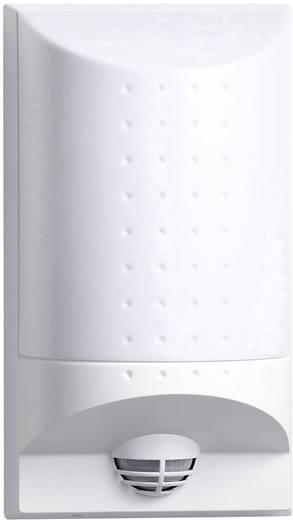 Steinel Professional L650 S 4033 LED-Hausnummernleuchte mit Bewegungsmelder 8 W Warm-Weiß Weiß