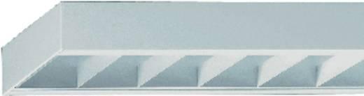 Rasterleuchte Leuchtstoffröhre G13 58 W Regiolux 65041584170 Weiß