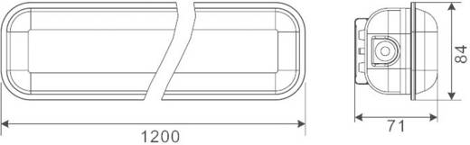 Feuchtraumleuchte LED LED fest eingebaut 39 W Kalt-Weiß Esotec Grau