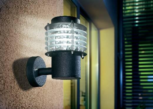 LED-Außenwandleuchte 4.8 W Kalt-Weiß Esotec 201122 Schwarz