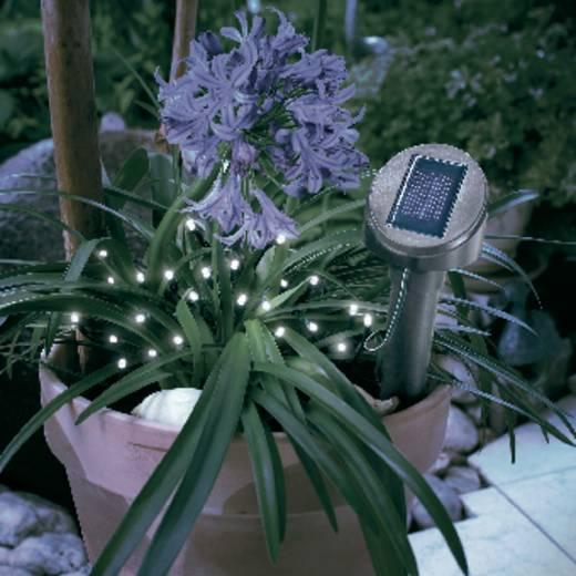 Esotec 102154 Solar-Lichterkette Außen solarbetrieben 24 LED Weiß Beleuchtete Länge: 5 m