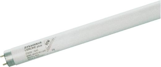 OSRAM Leuchtstoffröhre EEK: A (A++ - E) G13 1500 mm 230 V 58 W Warm-Weiß Röhrenform 25 St.