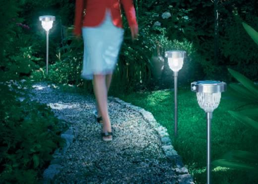 Solar-Gartenleuchte mit Bewegungsmelder LED 2 W Tageslicht-Weiß Esotec Asinara 102096 Edelstahl