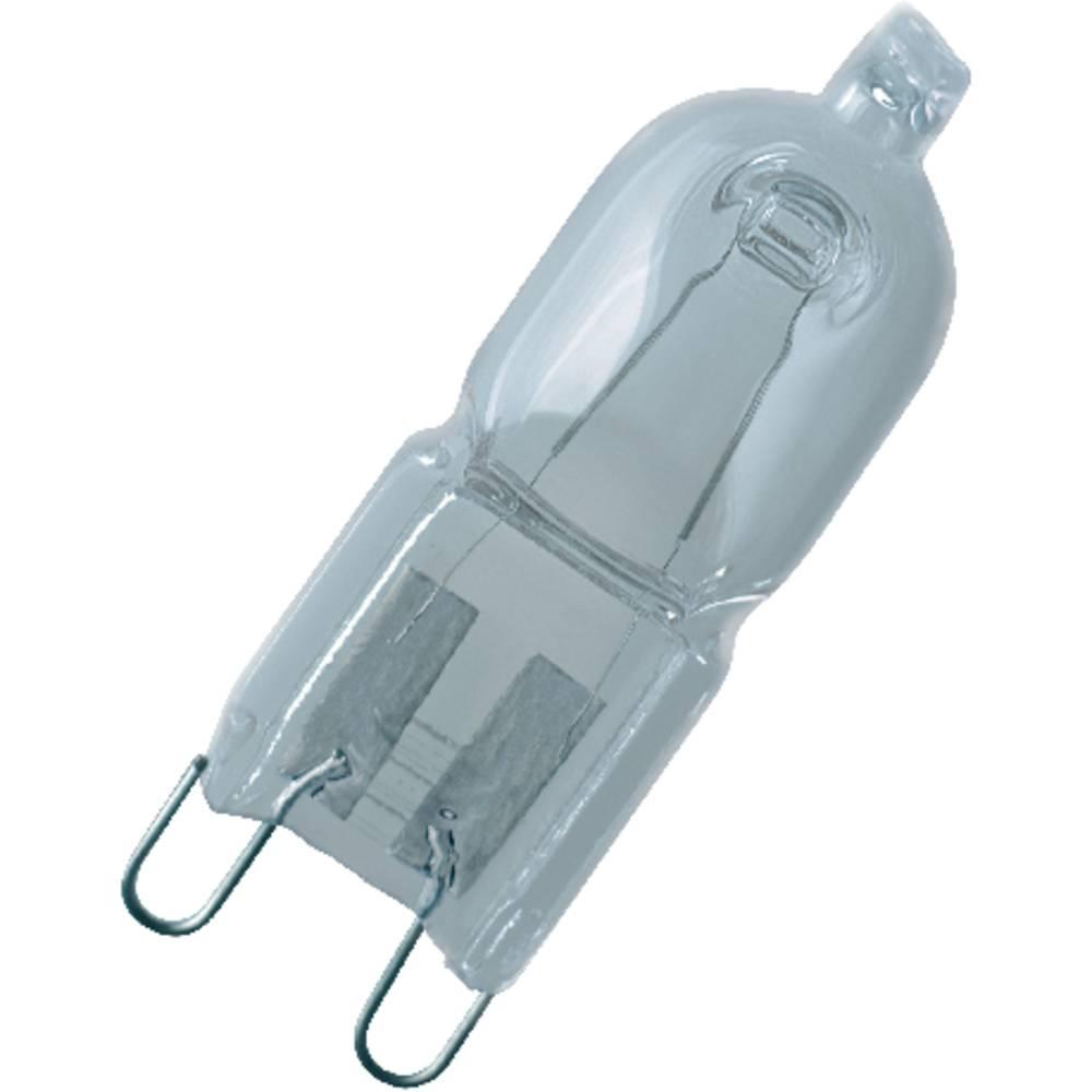 g9 halogen bulb 25w 230v plug base 50333c31 from conrad. Black Bedroom Furniture Sets. Home Design Ideas
