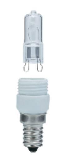 Leuchtmittel Bausatz Sockelset Paulmann analog Leuchtmittel EEK: D
