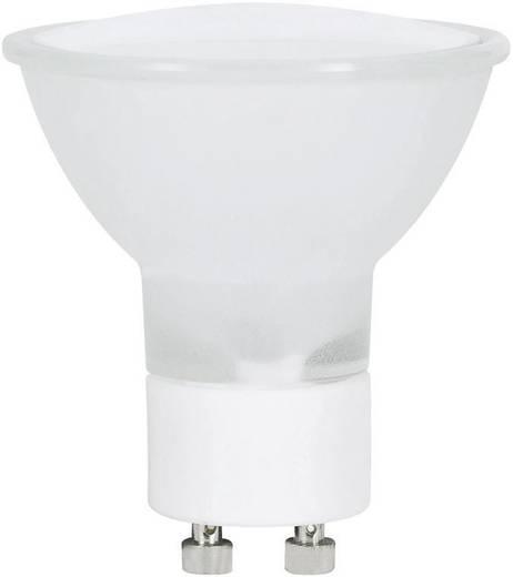 Halogen Paulmann 230 V GZ10 40 W Warm-Weiß EEK: C Reflektor 1 St.