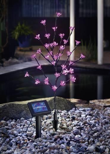 Solar-Dekoleuchte Blütenstrauch LED 0.6 W Pink Esotec Blütenstrauch 102104 Anthrazit