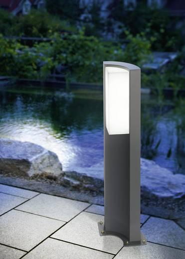 LED-Außenstandleuchte 5.2 W Kalt-Weiß Esotec 201132 Tirano Anthrazit