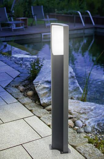 LED-Außenstandleuchte 5.2 W Kalt-Weiß Esotec 201134 Tirano Anthrazit