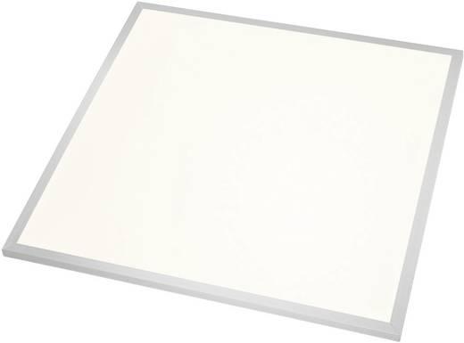 Esotec 201265 LED-Einbauleuchte 40 W Warm-Weiß Silber, Weiß
