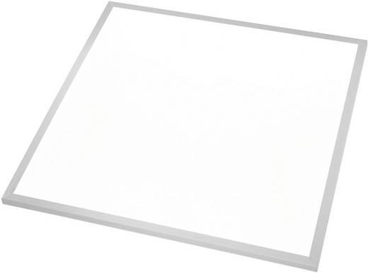 Esotec 201266 LED-Einbauleuchte 40 W Neutral-Weiß Silber, Weiß