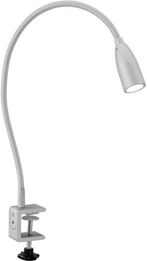 LED-Klemmleuchte 1 W Warm-Weiß Paul Neuhaus Morphea 1189-55 Silber