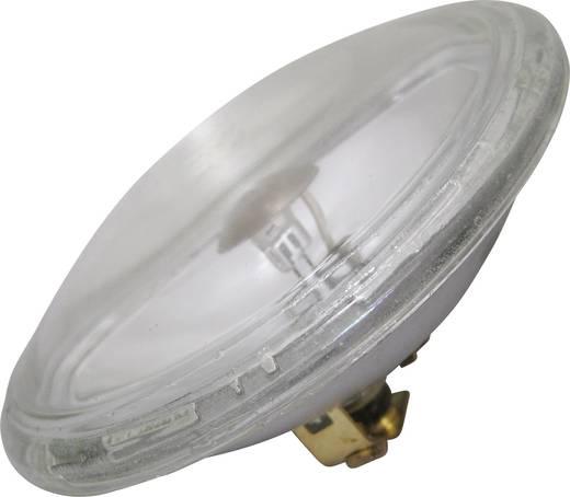 Halogen Lichteffekt Leuchtmittel PUNKTSTRAHLER FLOOD EEK: C (A++ - E) 6 V G53 STC 30 W Weiß dimmbar