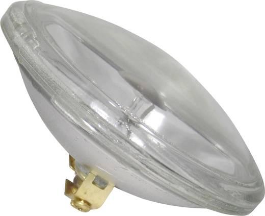 Halogen Lichteffekt Leuchtmittel PUNKTSTRAHLER FLOOD 6 V G53 STC 30 W Weiß dimmbar