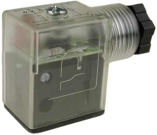Stecker Precon B-12443-0127 12 - 24 V/DC