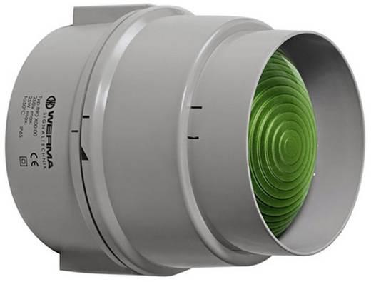 Signalleuchte Werma Signaltechnik 890.200.00 Grün Dauerlicht 12 V/AC, 12 V/DC, 24 V/AC, 24 V/DC, 48 V/AC, 48 V/DC, 110