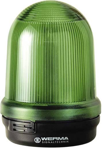 Signalleuchte Werma Signaltechnik 826.200.00 Grün Dauerlicht 12 V/AC, 12 V/DC, 24 V/AC, 24 V/DC, 48 V/AC, 48 V/DC, 110
