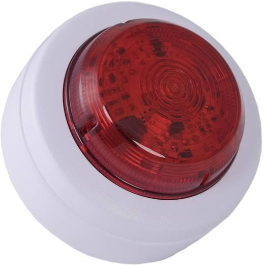 Signalleuchte LED ComPro Solista Maxi Weiß 9 V/DC, 12 V/DC, 24 V/DC, 48 V/DC