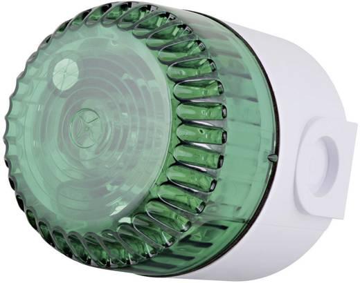 Signalleuchte ComPro Solex 10Cd Grün Blitzlicht 12 V/DC, 24 V/DC, 48 V/DC