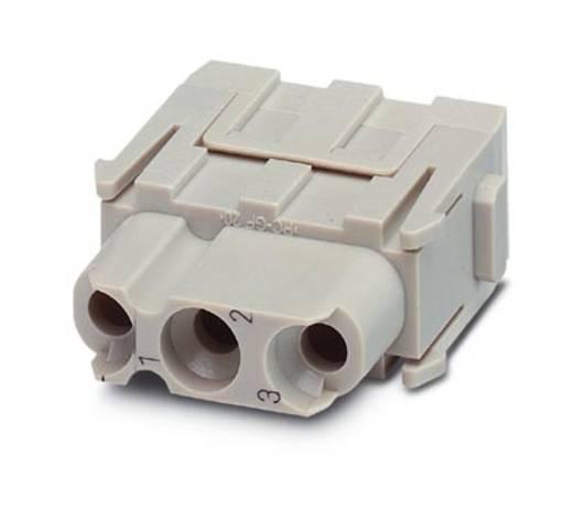 HC-M-03-MOD-BUC - Kontakteinsatz