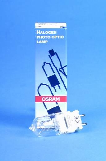 Halogen Lichteffekt Leuchtmittel OSRAM 64672 M40 225 V GY9.5 500 W Weiß