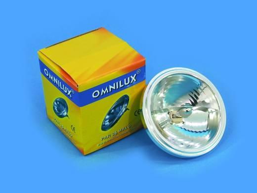 Halogen Lichteffekt Leuchtmittel Omnilux Par-36 Lampe 6 V G53 STC 35 W Weiß dimmbar