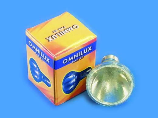 Halogen Lichteffekt Leuchtmittel Omnilux Par-20 Spot 230 V E27 75 W Weiß dimmbar