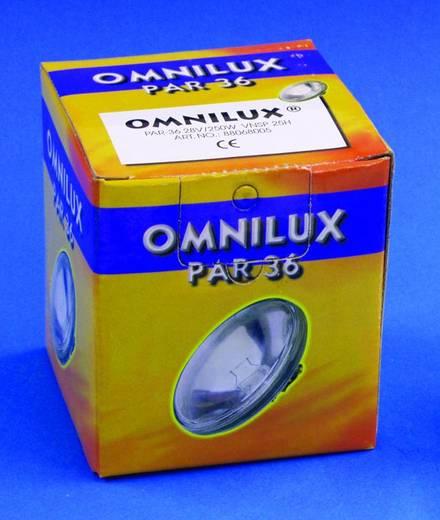 Halogen Lichteffekt Leuchtmittel Omnilux Par-36 Lampe 28 V G53 STC 100 W Weiß dimmbar