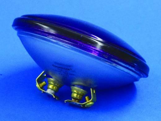 Halogen Lichteffekt Leuchtmittel Omnilux 88061010 6 V G53 STC 30 W Violett dimmbar
