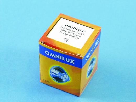 Halogen Lichteffekt Leuchtmittel Omnilux 88264105 24 V GX5.3 250 W Weiß