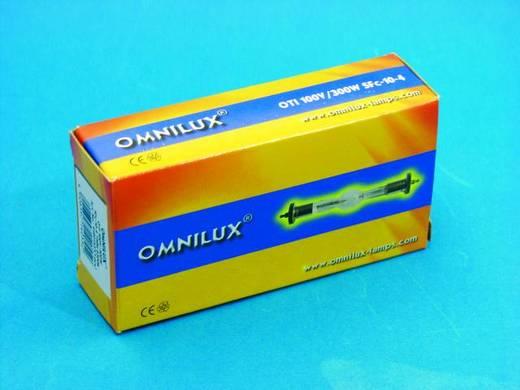 Entladungs Lichteffekt Leuchtmittel Omnilux 91201337 100 V SFc10-4 300 W Weiß