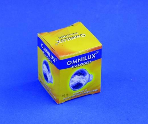 Halogen Lichteffekt Leuchtmittel Omnilux ELH 120 V GY5.3 300 W Weiß
