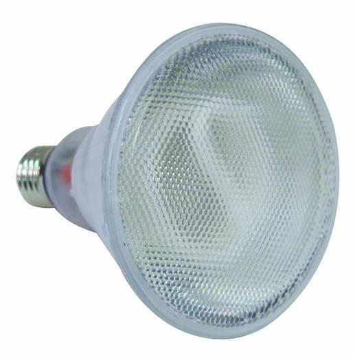 Halogen Lichteffekt Leuchtmittel Omnilux 88080505 230 V E27 20 W Weiß
