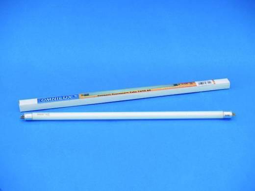 Halogen Lichteffekt Leuchtmittel Omnilux 92000416 230 V G5 8 W Weiß