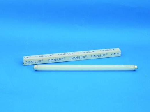 Halogen Lichteffekt Leuchtmittel Omnilux 92001425 230 V G13 15 W Weiß