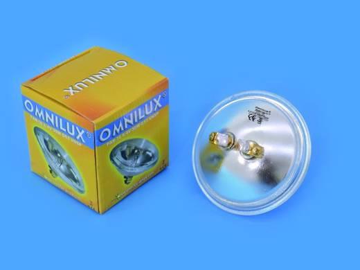 Halogen Lichteffekt Leuchtmittel Omnilux PAR-36 Lampe 6.4 V G53 STC 30 W Weiß dimmbar