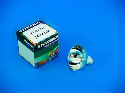 Halogen Lichteffekt Leuchtmittel Sylvania ELC 230 V GX5.3 250 W Weiß