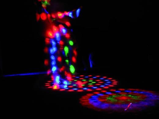 Eurolite LED FX-300 Flowereffekt