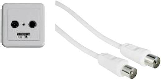 wittenberg antennen kabel tv anschluss set einfach typ 2 5. Black Bedroom Furniture Sets. Home Design Ideas