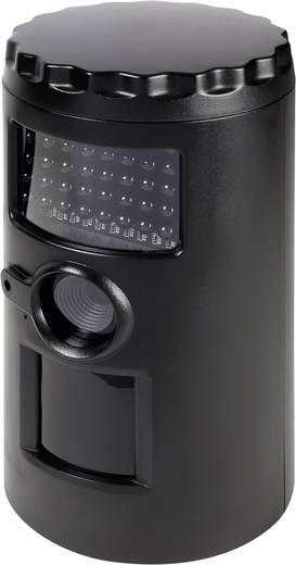 Getarnte Überwachungskamera im PIR-Gehäuse 32 GB mit Bewegungsmelder 640 x 480 Pixel 596113